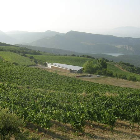 bodegas-CASTELL-DENCus-doowine-mini